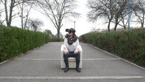 Frau benutzt VR-Ausrüstung bei der Entspannung in einem Lehnsessel im Park stock video footage