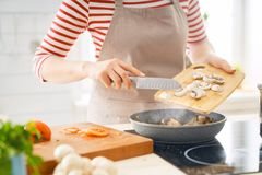 Frau bereitet richtige Mahlzeit vor stockbild