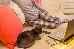 Frau in den Pyjamas unter Verwendung eines Laptops mit Gläsern, einem Telefon und einer Katze Stockbild