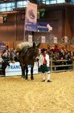 Frau in der ererbten Gewohnheit, die mit ihrem Pferd wartet Lizenzfreies Stockbild