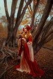 Frau in der mittelalterlichen Kleidung mit einem Fuchs stockbild