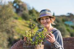 Frau in der Natur mit Topf mit Anlage Stockfotografie
