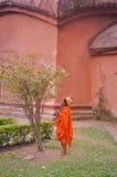 Frau in der Orange in Assam Stockfotos