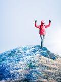 Frau an der Spitze des Berges Lizenzfreies Stockfoto