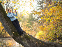 Frau in der Strickjacke lehnend auf einem Baum und unter Verwendung des Telefons fotografiert Lizenzfreie Stockbilder
