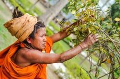 Frau in Dibrugarh in Assam lizenzfreie stockfotografie