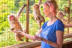 Frau, die Affen isst Stockfoto