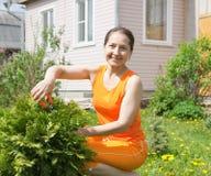 Frau, die Arbeit in ihrem Garten erledigt lizenzfreies stockfoto