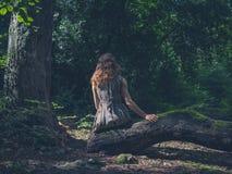 Frau, die auf Anmeldungswald sitzt Lizenzfreie Stockbilder
