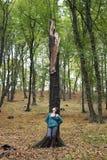 Frau, die auf Baum sich lehnt Lizenzfreie Stockfotos