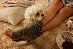 Frau, die auf Bett mit Hund liegt lizenzfreies stockbild