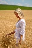 Frau, die auf dem Weizengebiet geht Stockfotografie
