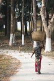 Frau, die auf den Teegebieten in Srimangal, Bangladesch arbeitet Lizenzfreie Stockfotos