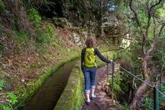 Frau, die auf levada 25 Brunnen in Rabacal, Madeira-Insel geht Lizenzfreie Stockbilder