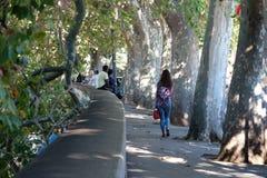 Frau, die auf treelined Bürgersteig entlang dem Tiber-Fluss in Rom geht Lizenzfreie Stockfotografie