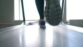 Frau, die auf Tretmühle in der Gymnastik läuft stock video