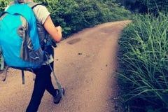 Frau, die auf Waldspur wandert Stockbilder