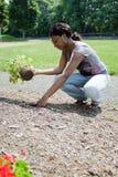 Frau, die Blumen pflanzt lizenzfreie stockfotografie