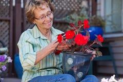 Frau, die Blumenpotentiometer betrachtet Stockfotos