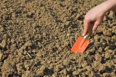 Frau, die Boden für die Frühlingsgartenarbeit vorbereitet Lizenzfreies Stockfoto
