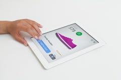 Frau, die das Internet-Einkaufen auf Tablet-Computer tut Lizenzfreies Stockbild