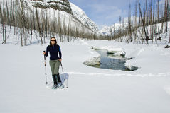 Frau, die in den kanadischen Rockies snowshoeing ist Stockbild