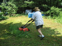 Frau, die den Rasen mäht Stockfotos