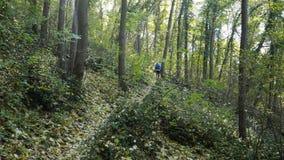 Frau, die in den Wald läuft stock footage