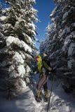 Frau, die in den Winterkarpatenbergen snowshoeing ist Stockfoto