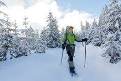Frau, die in den Winterkarpatenbergen snowshoeing ist Stockbilder