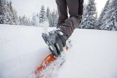 Frau, die in den Winterkarpatenbergen snowshoeing ist Stockfotografie