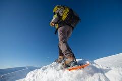 Frau, die in den Winterkarpatenbergen snowshoeing ist Stockbild