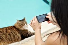 Frau, die der Katze Fotos macht Lizenzfreie Stockfotos