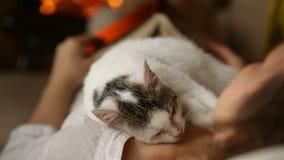 Frau, die durch den Kamin - Kätzchen schläft auf ihrem Kasten sich entspannt stock video