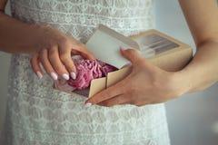 Frau, die Eibische in einer Pappschachtel hält lizenzfreie stockfotos