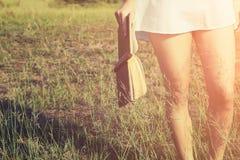Frau, die ein Buch in den Wiesen auf dem Sonnenschein des Morgens hält Stockfoto