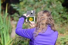 Frau, die ein Foto der Blume macht stockfotografie