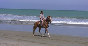 Frau, die ein Pferd auf den Sand an einem sonnigen Tag reitet stock video