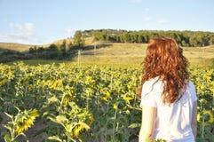Frau, die ein Sonnenblumenfeld bei Sonnenuntergang betrachtet Lizenzfreies Stockfoto