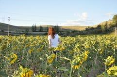 Frau, die ein Sonnenblumenfeld bei Sonnenuntergang betrachtet Stockbild