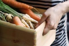 Frau, die eine hölzerne Kiste voll vom Gemüse am Markt hält Lizenzfreies Stockfoto