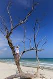 Frau, die in einem Baum heraus schaut zum Ozean steht Stockfotografie