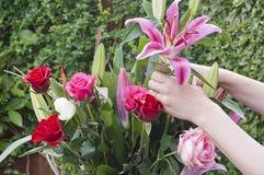 Frau, die einen Blumenstrauß von Blumen vereinbart Lizenzfreie Stockfotografie