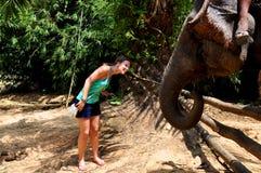 Frau, die einen Elefanten speist Stockfotografie
