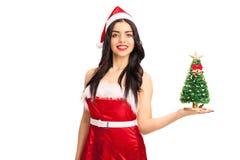 Frau, die einen kleinen Weihnachtsbaum hält Lizenzfreies Stockfoto