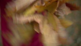 Frau, die einen Kranz von den Ahornblättern macht stock video