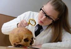 Frau, die einen menschlichen Schädel überprüft Stockfotos