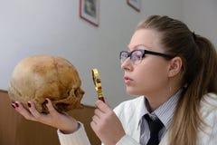 Frau, die einen menschlichen Schädel überprüft Stockbilder