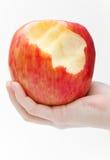 Frau, die einen sehr großen Apfel mit einem fehlenden Bissen anhält Lizenzfreies Stockbild