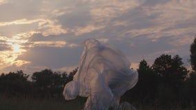 Frau, die in einer Plastikblase in einer Wiese kämpft stock footage